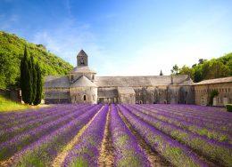 senanque-abbey-lavender-cr-getty